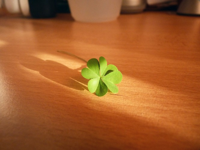 four_leaf_clover_by_soberdreamer